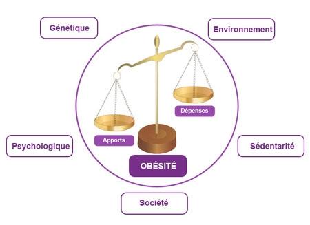 Schéma des causes de l'obésité